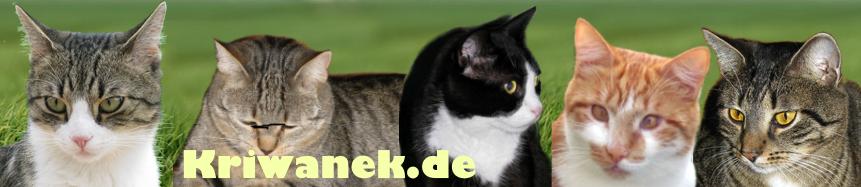 Kriwanek.de